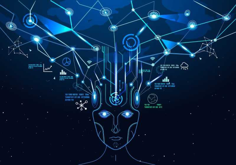 The Mind's Spatialization in Humans and Non-humans