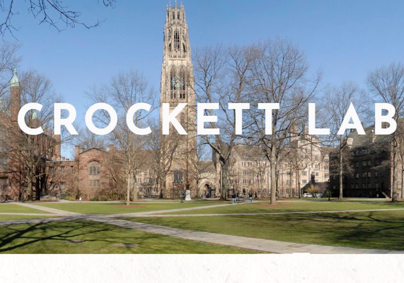 Postdoctoral position in the The Crockett Lab, Yale University, New Haven, CT, USA